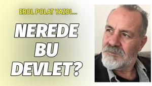 Erol Polat yazdı... Nerede bu devlet?