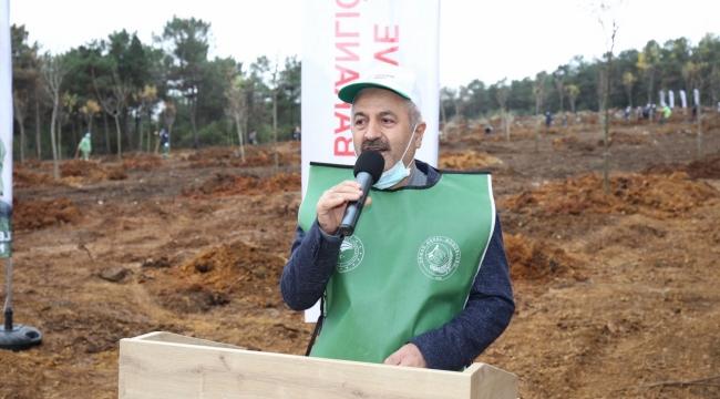 Gaziler'de yüzlerce ağaç toprakla buluştu