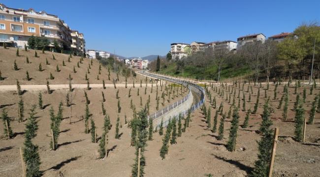 Kocaeli'de kişi başına düşen yeşil alan miktarı 12,57 metrekare oldu
