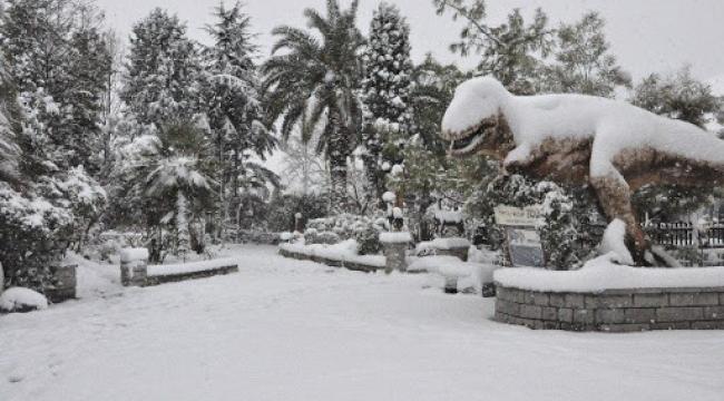 Kocaeli Valiliği'nden kar uyarısı!