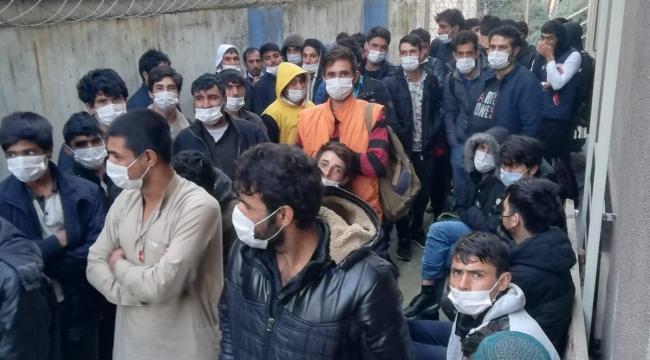 Darıca'da 90 düzensiz göçmen yakalandı!