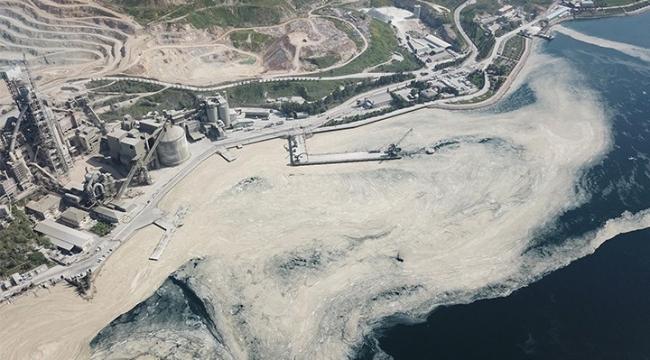 Darıca'da da görülen deniz salyasıyla gelebilecek büyük tehlike!