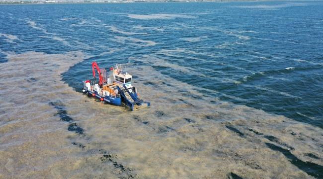 Darıca ve İzmit Körfezi'ndeki deniz salyaları toplanıyor!