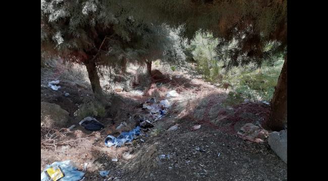 Darıca'da çürümüş halde ceset bulundu