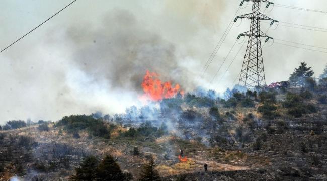 Orman yangınına sebebiyet veren 1 kişi yakalandı