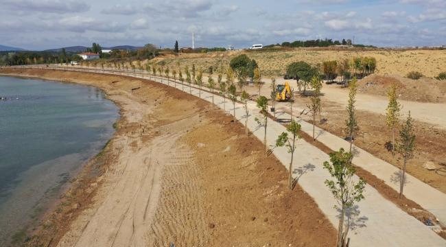 Bayramoğlu Balyanoz Koyu'na 350 adet ağaç dikildi