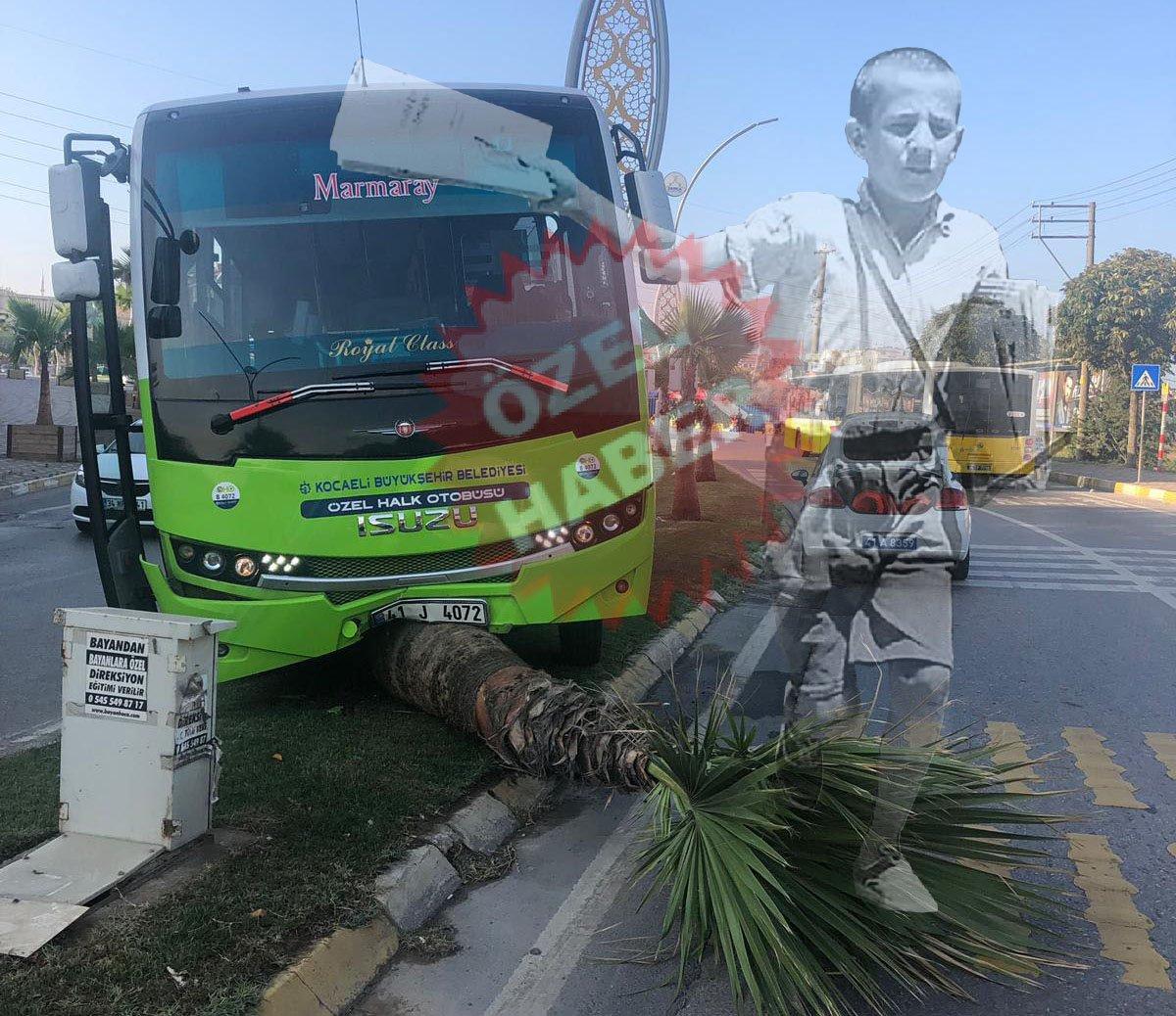Halk Otobüsü, ağaç devirdi